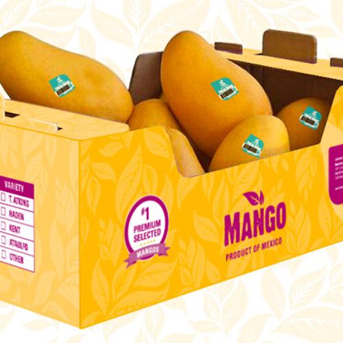 House Delights Mango