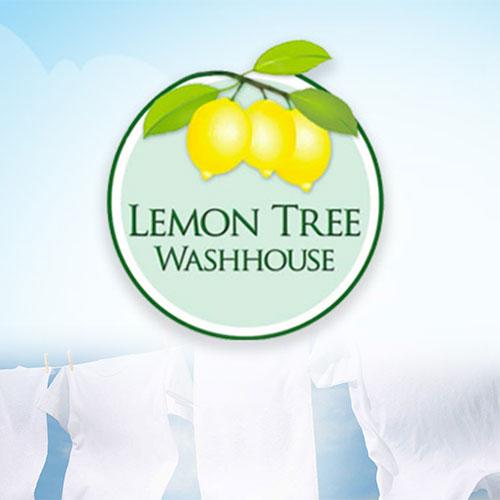 lemon tree washhouse responsive website